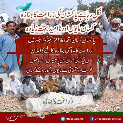 Moonis Elahi-A Sign Of Hope For Farmers