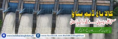 moonis-elahi-kalabagh-dam