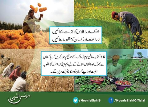 Moonis Elahi and Agriculture problems in Pakistan