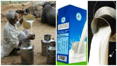 Moonis Elahi Condemns Use Of Substandard Materials By The Dairy Giants